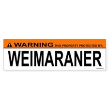 WEIMARANER Bumper Car Sticker