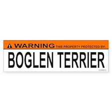 BOGLEN TERRIER Bumper Car Sticker