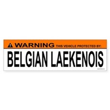 BELGIAN LAEKENOIS Bumper Bumper Sticker