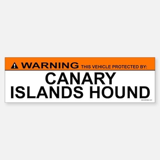 CANARY ISLANDS HOUND Bumper Bumper Bumper Sticker