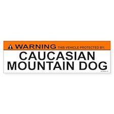 CAUCASIAN MOUNTAIN DOG Bumper Bumper Sticker