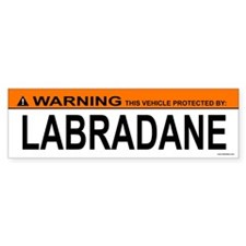 LABRADANE Bumper Bumper Sticker