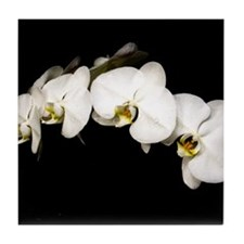 Tile Coaster - White Orchid on Black