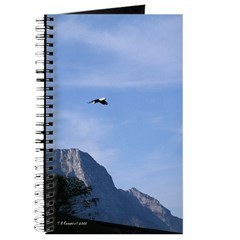 Eagle in the mountains - Journal