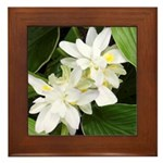 White Blossoms Framed Tile