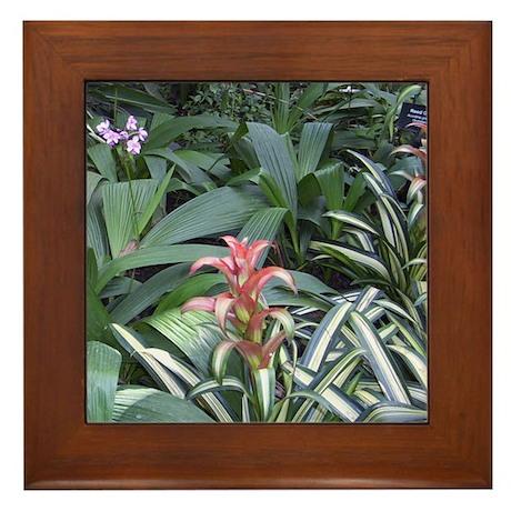 Tropical Garden Framed Tile