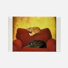 Cats sleeping on sofa. Magnets