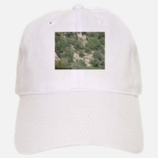Carr Canyon 1 Hat