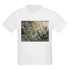 Carr Canyon 2 T-Shirt