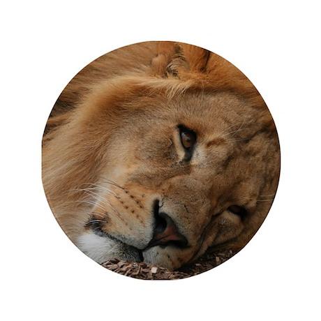 "Beautiful Lion 3.5"" Button"