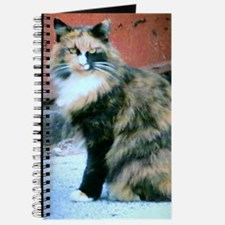 Callie Journal