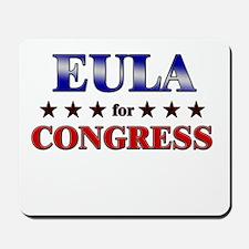 EULA for congress Mousepad