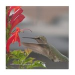 Hummingbird Tile Coaster