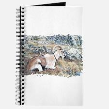 Brown pack-goat, Wyoming Journal