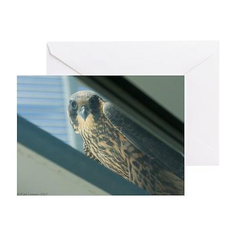 E-401 Esperanza Greeting Cards (Pk of 10)