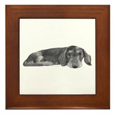 Wire Haired Dachshund Framed Tile