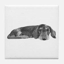 Wire Haired Dachshund Tile Coaster