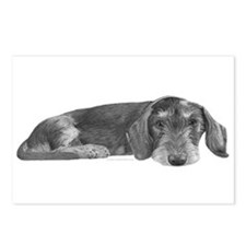 Wire Haired Dachshund Postcards (Package of 8)