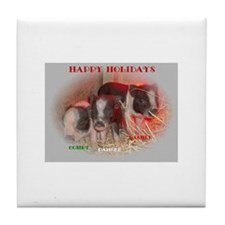Potbelly Pig Tile Coaster