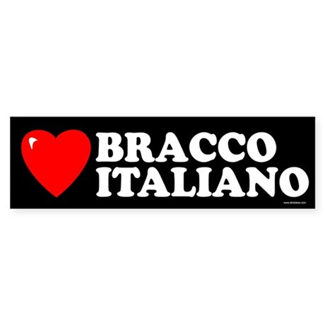BRACCO ITALIANO Bumper Sticker