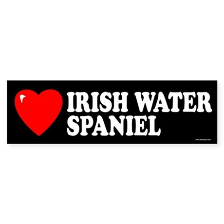 IRISH WATER SPANIEL Bumper Sticker