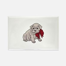 Bulldog Puppy Magnets