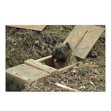 Cairn Terrier Earthdog Postcards (Package of 8)
