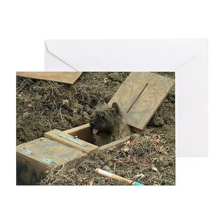 Cairn Terrier Earthdog Greeting Card