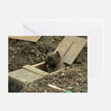 Cairn Terrier Earthdog Greeting Card