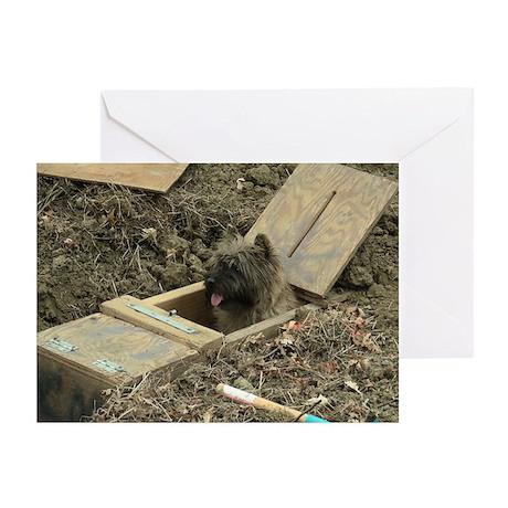 Cairn Terrier Earthdog Greeting Cards (Pk of 20)