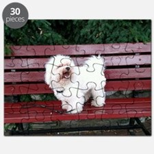 Sit with Beau Puzzle