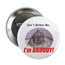Broody Hen Button