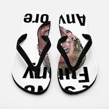 Cute Crazy Flip Flops