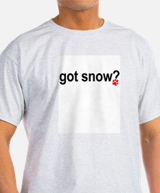 Got Snow Grey T-Shirt