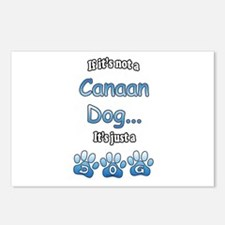 Canaan Dog Not Postcards (Package of 8)