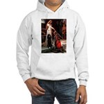 Accolade / Std Poodle(b) Hooded Sweatshirt
