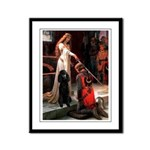 Accolade / Std Poodle(b) Framed Panel Print