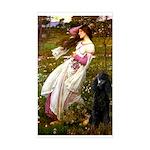 Windflowers / Poodle (BLk-ST) Sticker (Rectangle)