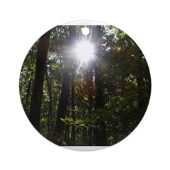 Sunny Forest Ornament