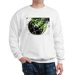 Chalice Well Sweatshirt