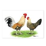 Norwegian Jaerhons Chickens Postcards (Package of