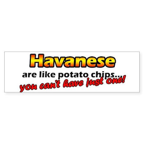 Potato Chips Havanese Bumper Sticker