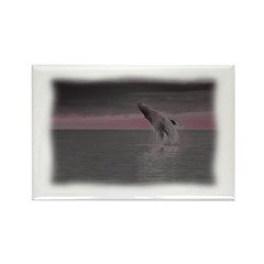Whales Dream Too Rectangle Magnet (10 pack)