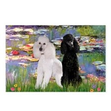 Lilies / 2 Poodles(b&w) Postcards (Package of 8)