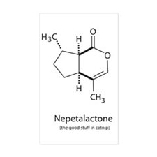 Chemical Catnip Rectangle Decal