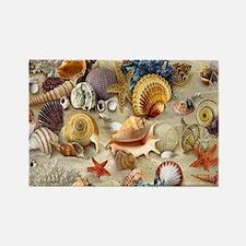 Seashells And Starfish Magnets
