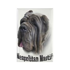 Neapolitan Mastiff Rectangle Magnet