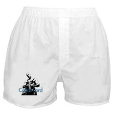 "Colton Ford ""blue font"" Boxer Shorts"