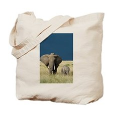 ELEPHANT MOTHER AND BABY Tote Bag