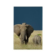 ELEPHANT MOTHER AND BABY Rectangle Magnet